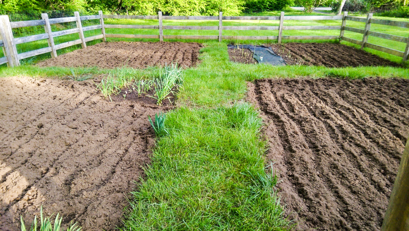 Vegetable garden ready 5.27.17